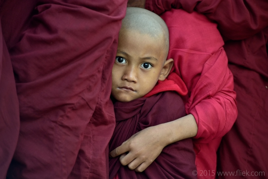 Ananda festival 2015 young monk